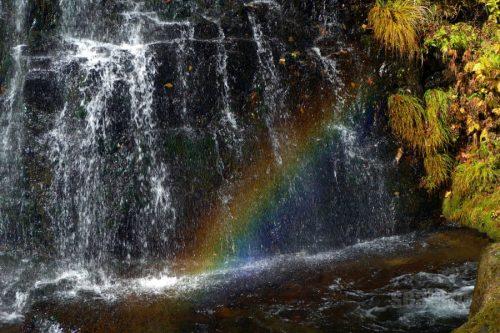行者の滝の虹