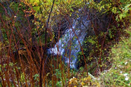 林道から見たイナシベツの滝