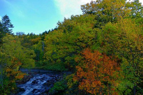 斑渓川と紅葉