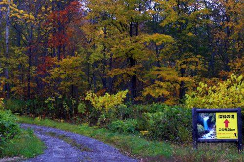 十七線沢林道と滝まで2km看板