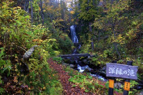 深緑の滝が見えてきた