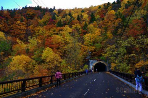 第一滝見橋と冷水トンネル