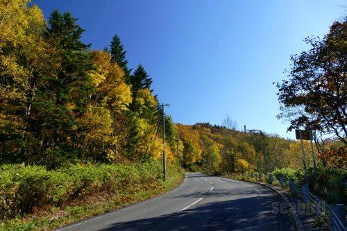 道道1号線の紅葉