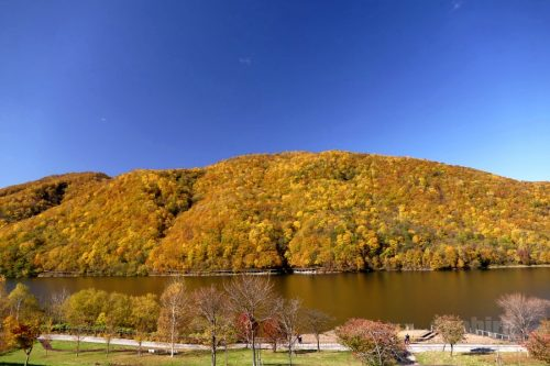 オタルナイ湖の紅葉