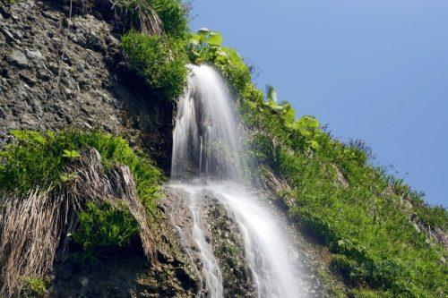 澤口の滝を見上げる