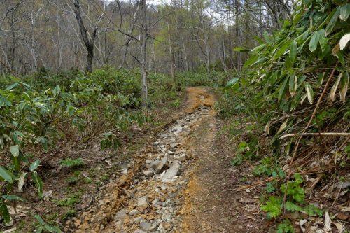 流水でえぐられた登山道
