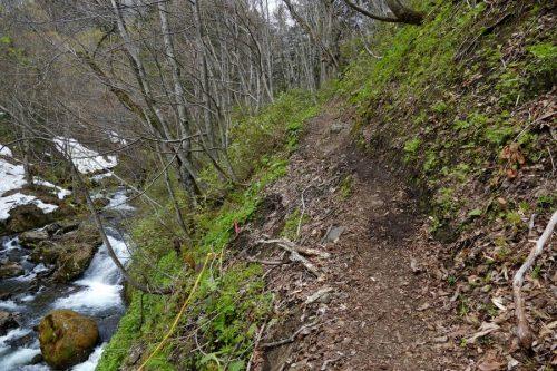 崩れ気味の登山道