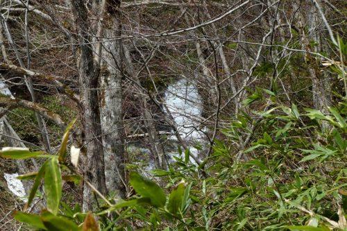 琴似発寒川の小滝