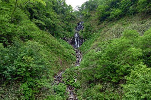 白滝全体の流れ