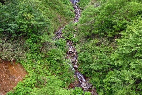渓流部分の流れ
