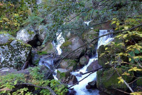 赤石川の小滝