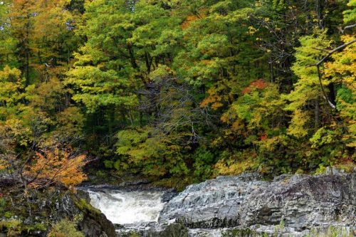 三段滝上段と紅葉