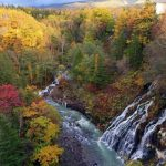 白ひげの滝と紅葉