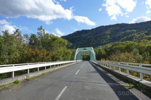 緑の橋を渡る