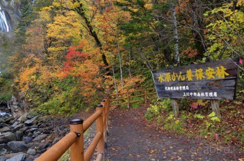 羽衣の滝展望スペース最奥部