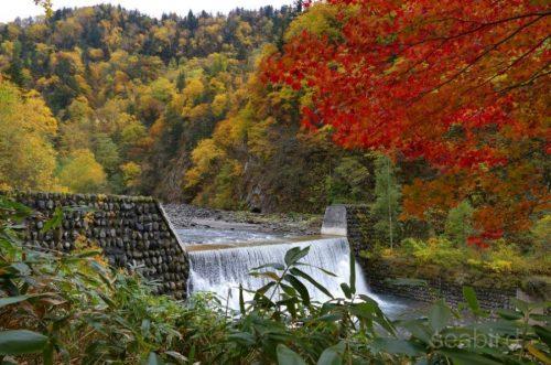 堰堤と紅葉