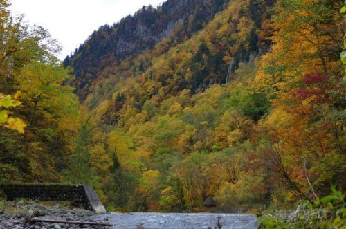 堰堤落口と紅葉