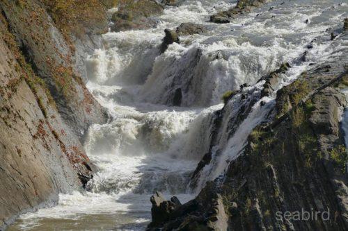 千鳥ヶ滝核心部分