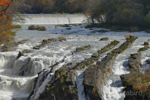 上流の流れ