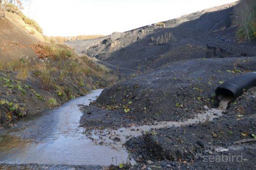 泥水を清流に合流