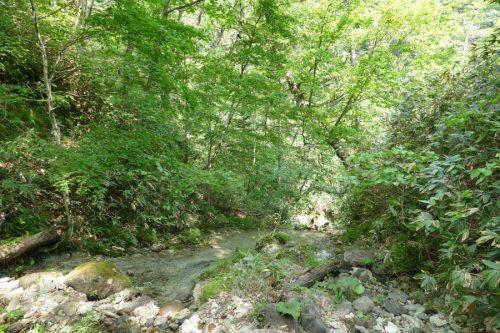 2番目のナメ滝