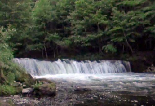 2005年に撮影したさくらの滝