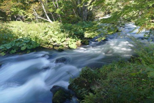 阿寒川の流れ