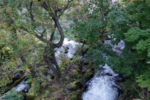 オシンコシンの滝落口
